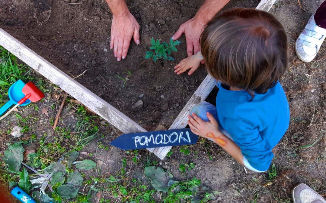 Un bene da coltivare: la storia dell'orto didattico antimafia di Rozzano